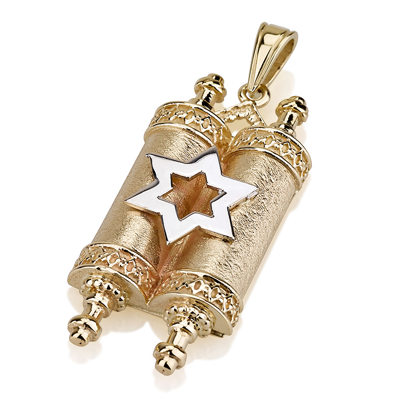Buy mezuzah necklace israel catalog 14k gold star of david and torah scroll necklace mozeypictures Images