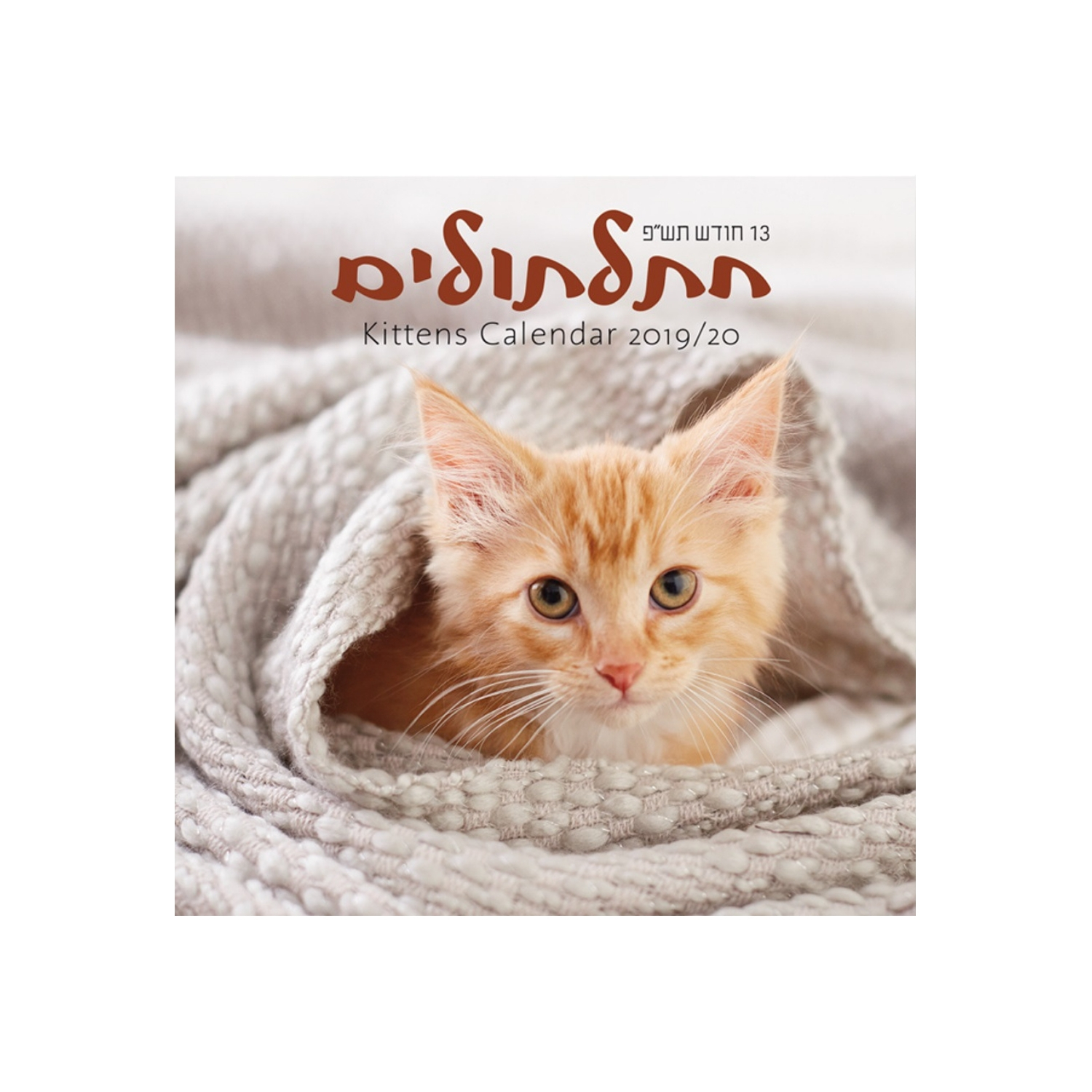 Buy Small Kittens Calendar Jewish Year 5780 [Sept 2019