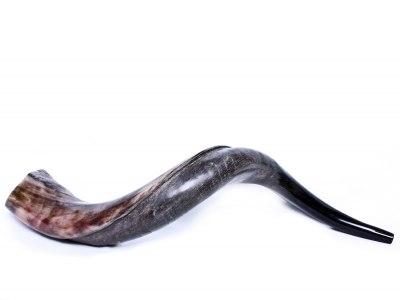 How to Measure a Shofar Size