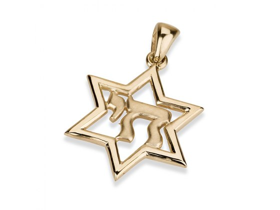 14K Gold Chai, Star of David Necklace