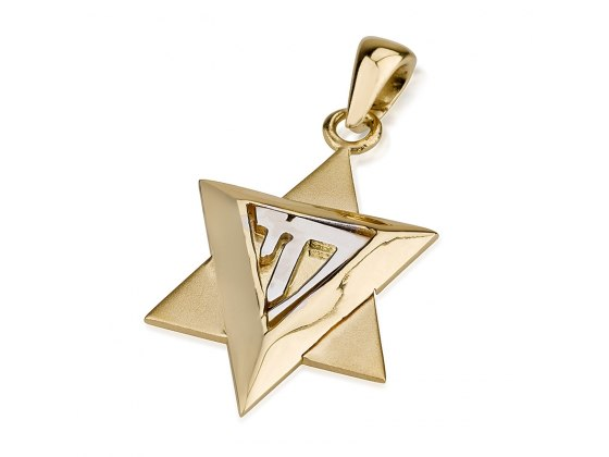 14K Gold Chai in a Star of david Necklace