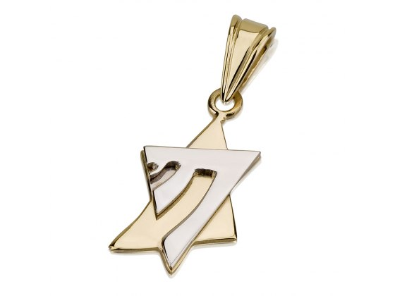 14K White and Yellow Gold Chai, Star of David Necklace