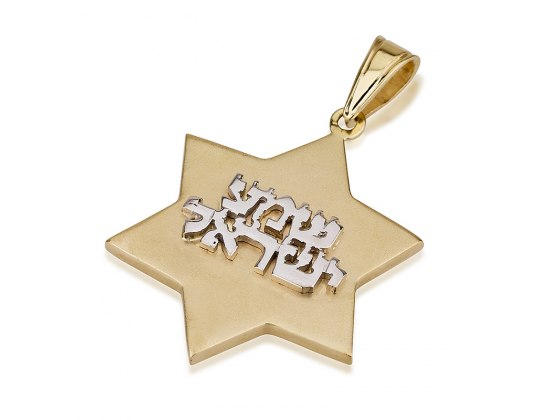 14K White Gold Shama Israel and Yellow Gold Star of David Necklace