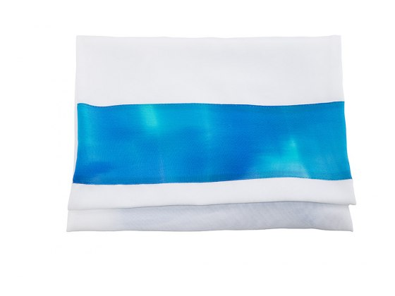 Blue Silk Women's Tallit with Hand Painted Seven Species