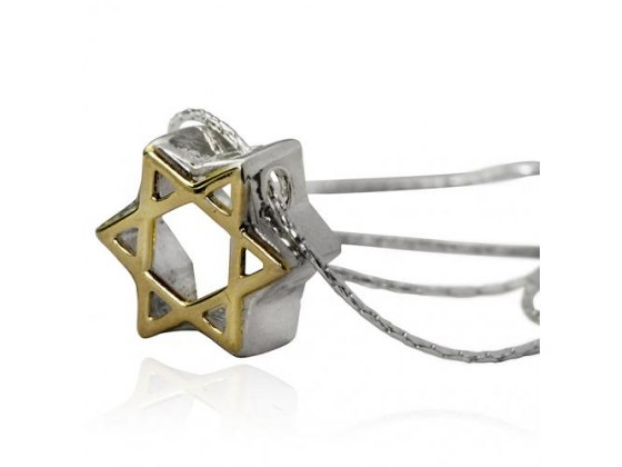 3D Gold and Silver , Star of David Necklace