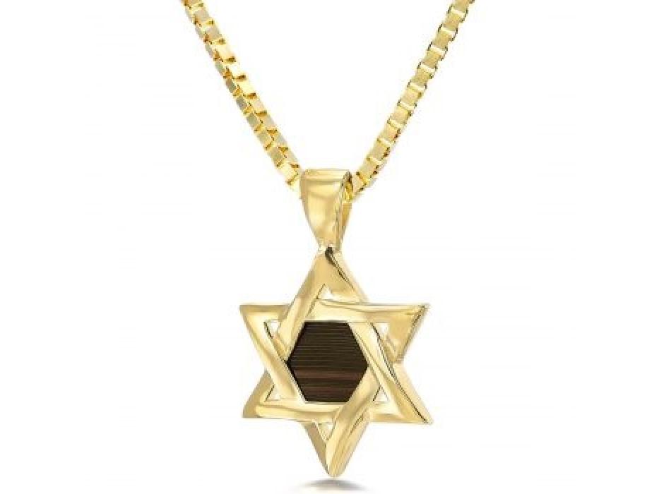 14K Gold Whole Bible Nano Jewelry Star of David Pendant