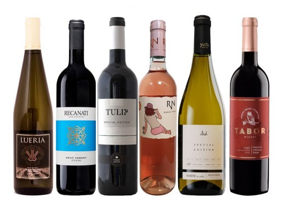 Israeli Special Edition Wines Large Holiday Gift Set