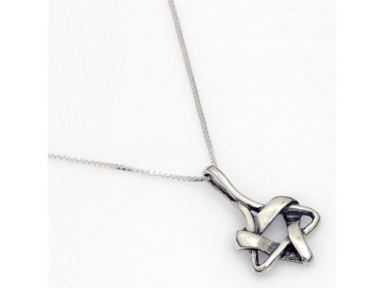 Braided Silver Star of David Necklace