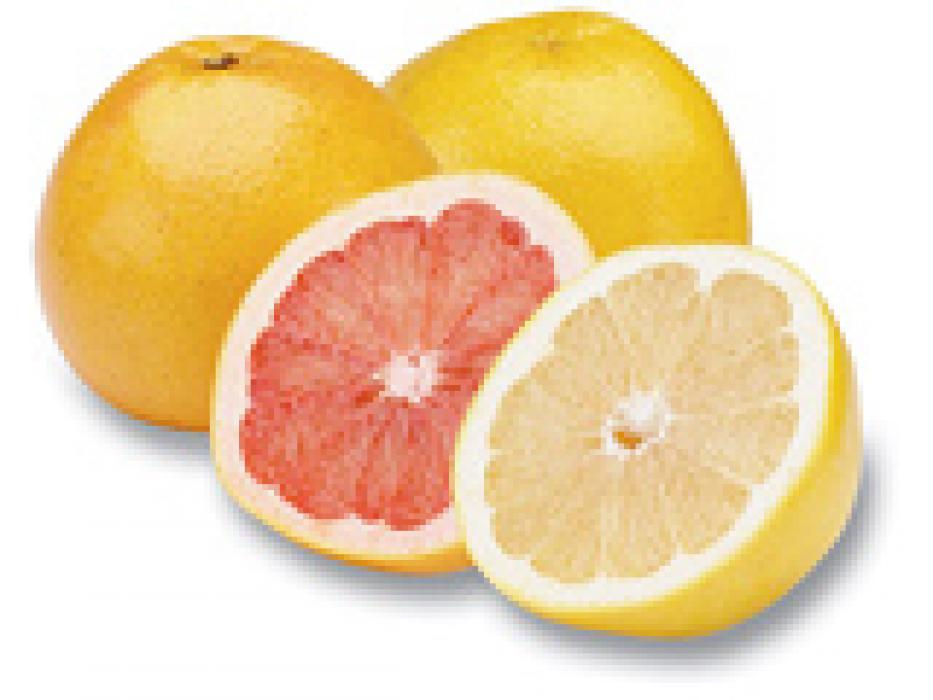 Tu B'Shvat Gift Basket of Israeli Citrus fruits - White Grapefruit