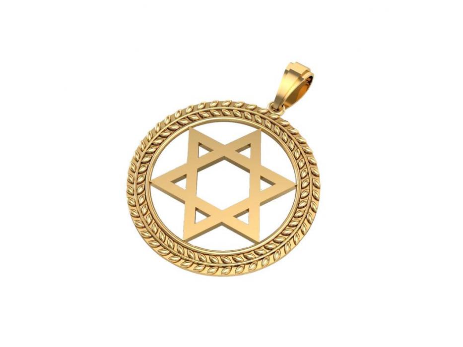 14K Gold Star of David Necklace with Circular Olive Leaf Frame