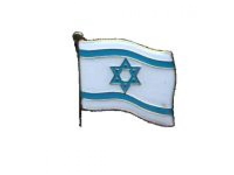 10 Israel Flag Lapel Pin