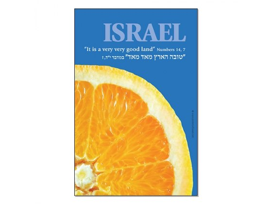 Httpwww Overlordsofchaos Comhtmlorigin Of The Word Jew Html: Buy Israeli Orange Poster