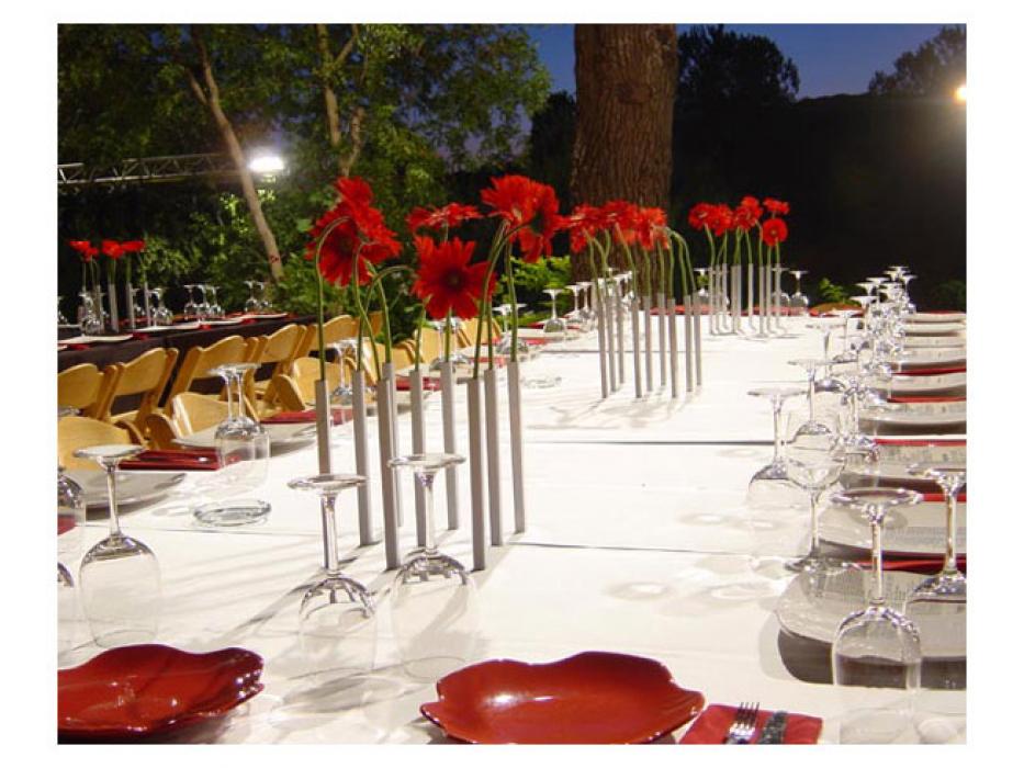 Magenetic Illusion Bud Vase Set of 5, 3 color options, Peleg Designs