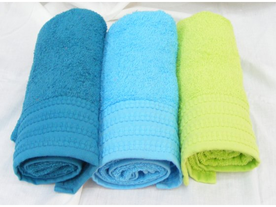 Buy Pinat Eden Embroidered Bath Towel 480g in Royal Blue, Lt Blue, Lime Green