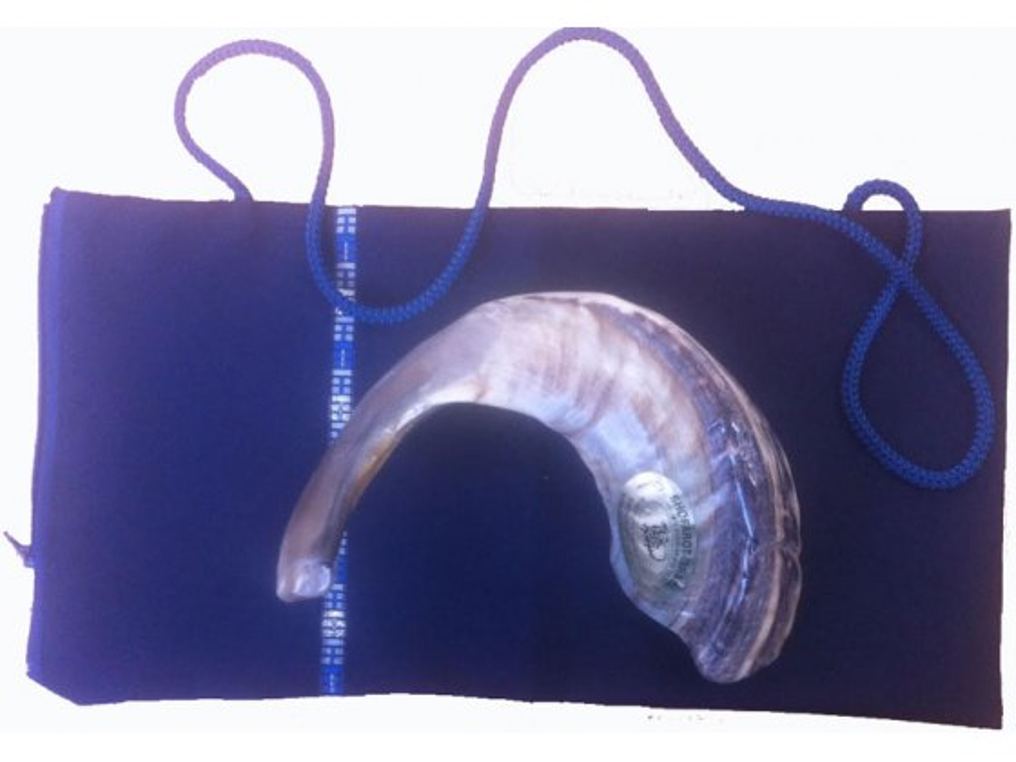 Ram's Horn Silk, Shofar Cover