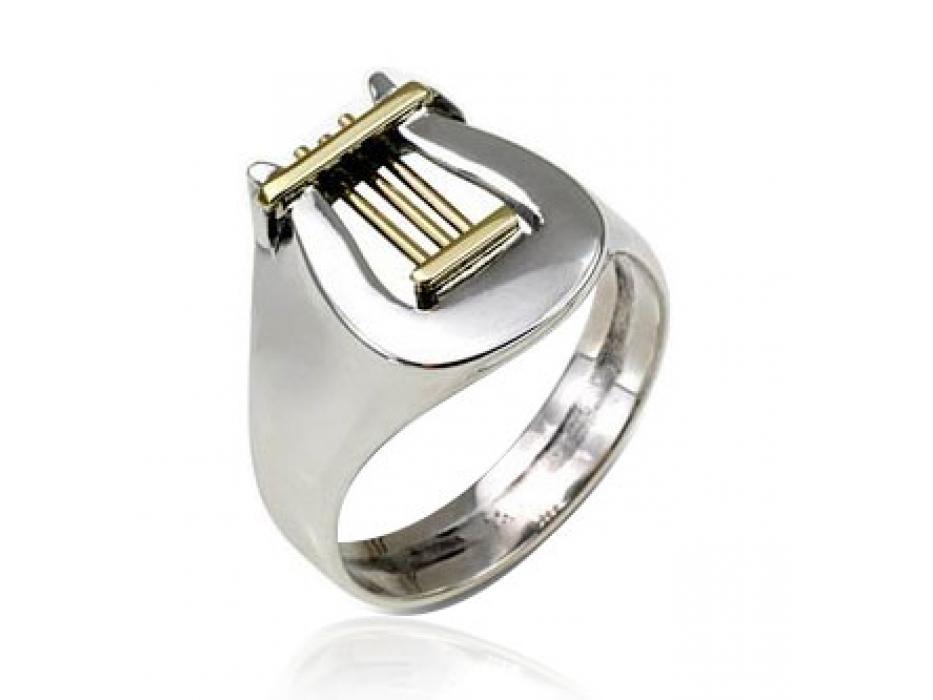 Silver and Gold Davids Harp Ring