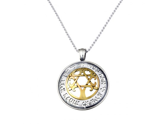 Silver and Gold Star of David Tree Verse Necklace