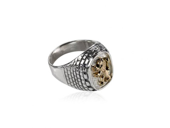 Silver and Gold Western Wall Lion of Judah Ring