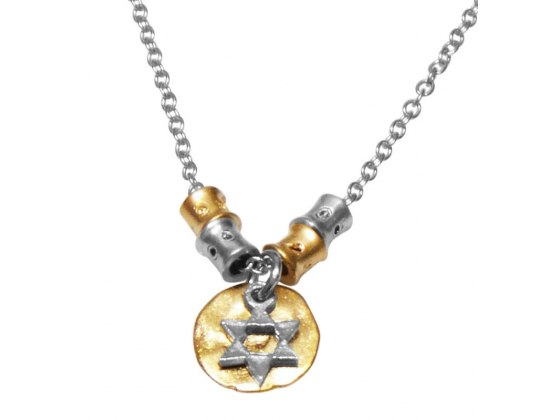 Silver on Gold Medallion, Star of David Necklace
