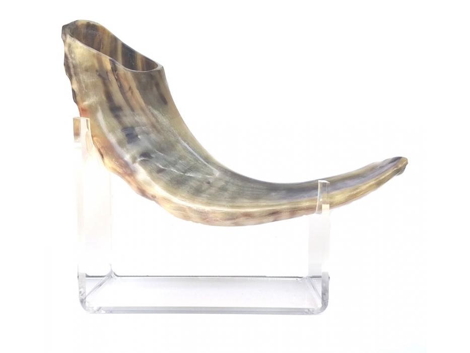 Silver Plated Rams Horn Shofar David's Star Blue Stone and Pasuk