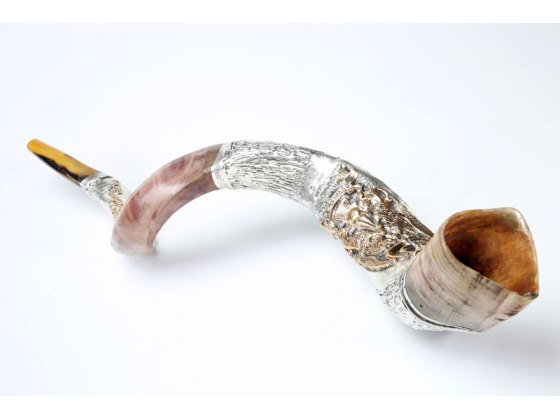 Silver Plated Yemenite Shofar with Menorah Lions and Grapes