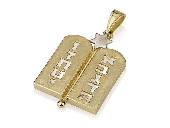 Silver Star of David Necklace with 14K Gold Two Tablets