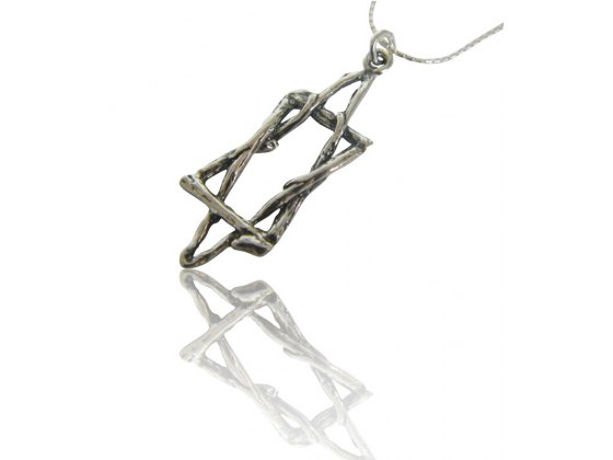 Sterling Silver Star of David Necklace Twigs and Branches Design
