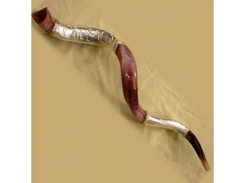 XLarge Silver Plated Yemenite  Shofar