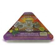 Set of 44 Pre Filled Solid Olive Oil Hanukkah Candles