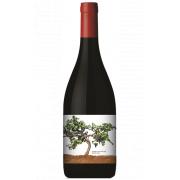 Recanati Winery Petite Sirah Reserve