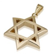 14K Gold Flex Star of David Necklace