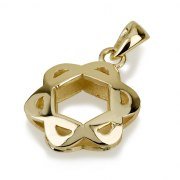 14k Gold Curved Star of David Necklace