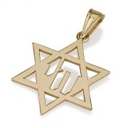 14K Gold Cutout Chai, Star of David Necklace