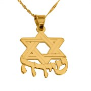 14K Gold Star of David with Hebrew Name
