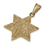 14K Gold Star of David Pendant with Jerusalem Design