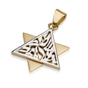 14K White and Yellow Gold Shema Yisrael, Star of David Necklace