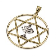 14K white Gold Menorah in a Yellow Gold Star of David Necklace