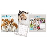 Small Kittens Calendar Jewish Year 5780 [Sept 2019 - Sept 2020]