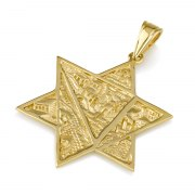 14K Gold Star of David Necklace with Scenes of Jerusalem in 3D