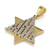 14K Gold Star of David Pendant Covered in the Word Jerusalem