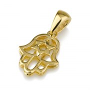 14K Gold Small Hamsa Necklace with Star of David
