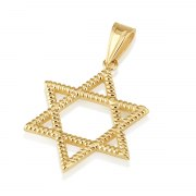 14K Yellow Gold Star of David Pendant with a Rope Texture