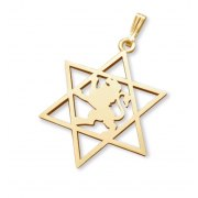 14K Gold Lion of Judea Star of David Necklace