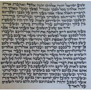 Basic Mezuzah Scroll 7 CM Handmade Treditional