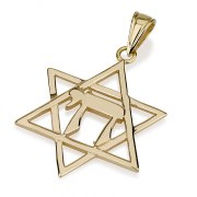 Classic 14K Gold Chai, Star of David Necklace