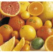 Gift Basket of Israeli Citrus fruits - Three Color