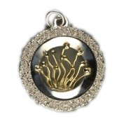Idit - Sterling Silver Silver Round Pendant with 18k Gold Tree of Life design