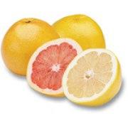Israeli Citrus fruits - Gift Basket of White Grapefruit