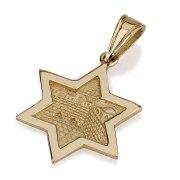 Jerusalem Inside 14K Gold Star of David Necklace