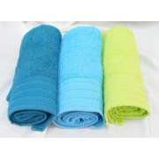 Buy Pinat Eden Embroidered Bath Towel 480g in Royal Blue, Lt Blue, Lime Green